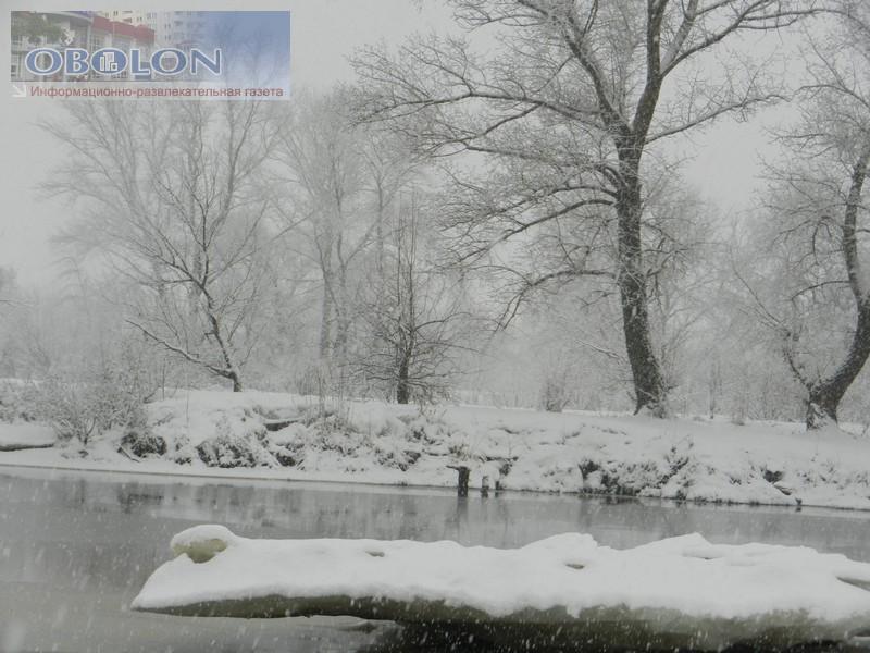 Зимняя Оболонь, февраль 2013 (26 фото) - zimnjaja-obolon-fevral-2013-26-foto_23