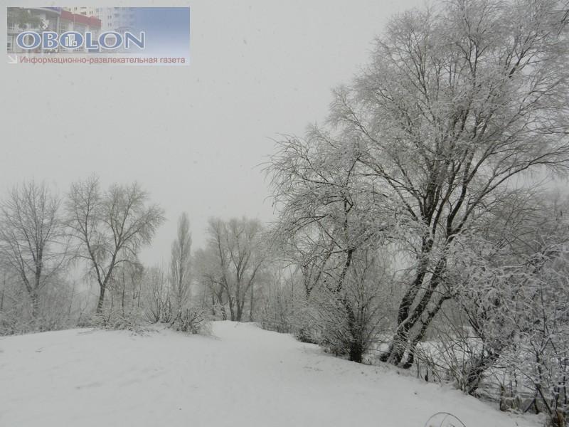 Зимняя Оболонь, февраль 2013 (26 фото) - zimnjaja-obolon-fevral-2013-26-foto_24