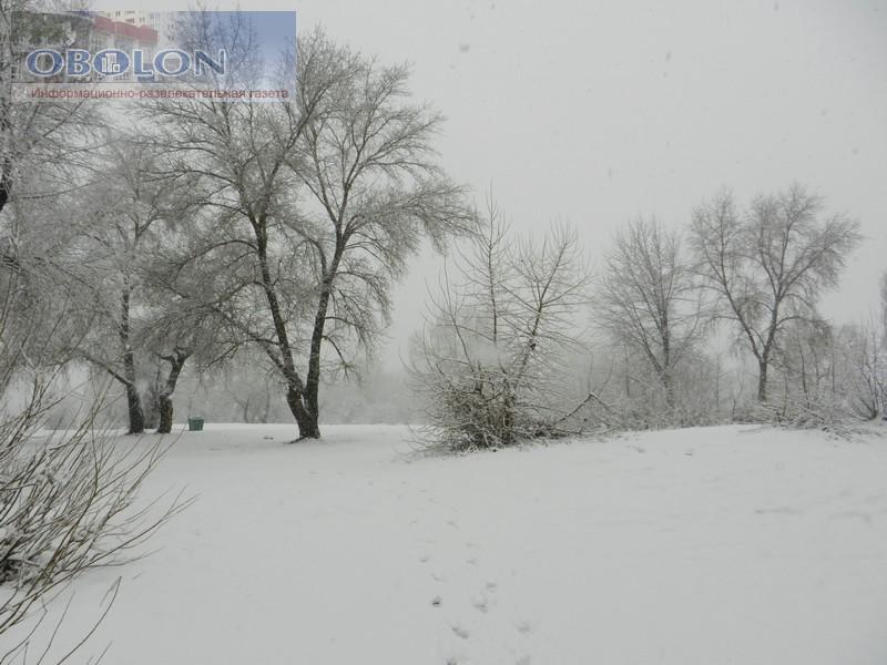 Зимняя Оболонь, февраль 2013 (26 фото) - zimnjaja-obolon-fevral-2013-26-foto_25