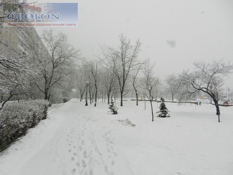 Зимняя Оболонь, февраль 2013 (26 фото) - zimnjaja-obolon-fevral-2013-26-foto_7