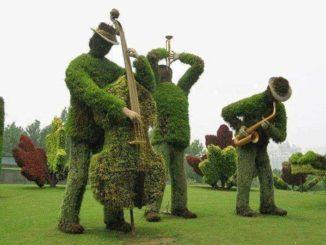 История и новости Оболони 4 причины заказать топиарные формы садовых фигур на сайте topiar.ua Интересные новости