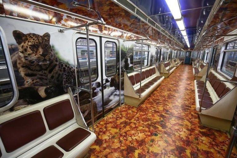 Нескучное метро - neskuchnye-vagony-metro-v-raznyx-gorodax-mira-17-768x512