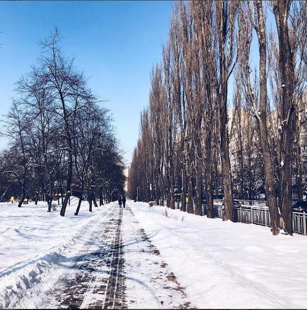 Морозные фото заснеженной столицы - 817024_main
