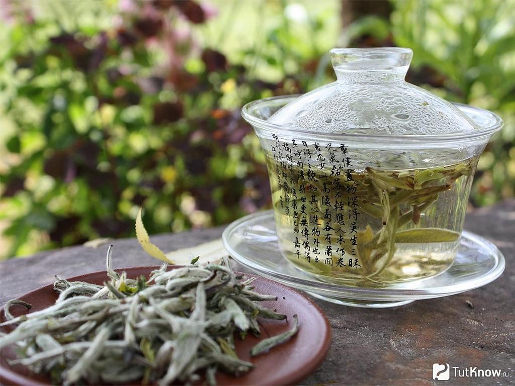 Белый чай купить в Киеве - chai-v-kieve