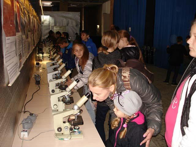 На ВДНХ зоопарк можно рассмотреть под микроскопом - DSC01401