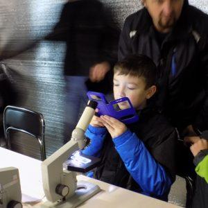 На ВДНХ зоопарк можно рассмотреть под микроскопом - DSCN1492-300x300