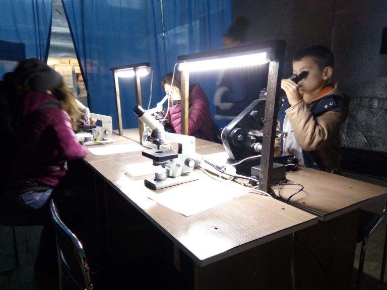 На ВДНХ зоопарк можно рассмотреть под микроскопом - IMG_20171014_150016-768x576